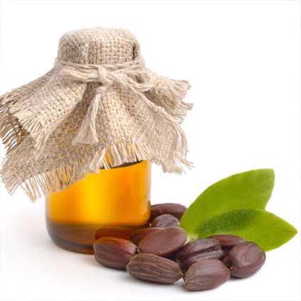 Jojobaöl Haut Und Haare Wirkung Anwendung Wo Kaufen